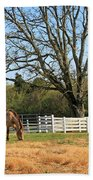 Horse And Hay Beach Towel