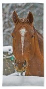 Horse And Snowflakes Beach Towel