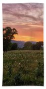 Horse At Sunset Beach Towel