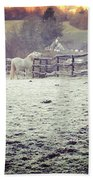 Horses On A Frosty Pasture Beach Towel