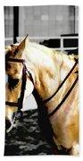 Horse Equus Ferus Caballus V2 Beach Towel