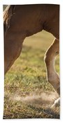 Horse Pawing In Pasture Beach Towel by Steve Gadomski