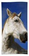 Horse Portrait Beach Towel by Gaspar Avila