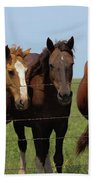 Horse Quintet Beach Towel