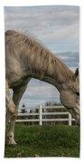 Horses #1 Beach Towel