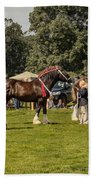 Horse Show Beach Towel