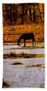 Horse Silhouetted Beach Towel