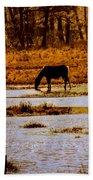 Horse Silhouetted Beach Sheet