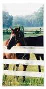 Horse Stable Beach Towel