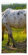 Horses And Buttercups Beach Towel