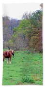 Horses In Autumn Amish Country Beach Towel