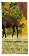 Horses In Autumn Beach Towel