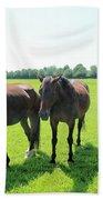 Horses In Bridgehampton Beach Towel