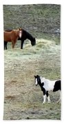 Horses In The Highlands Beach Towel