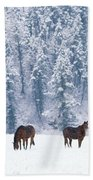 Horses In The Snow Beach Sheet