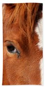 Horse's Mane Beach Towel