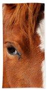 Horse's Mane Beach Towel