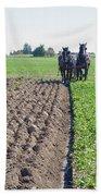 Horses Plowing Rows Two  Beach Towel