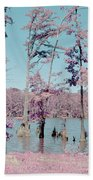 Horseshoe Conservation Area Infrared Beach Towel