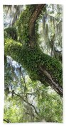Host Tree Beach Towel