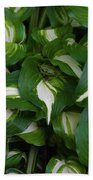 Hosta Beach Towel