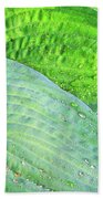 Hosta Lavista Baby Beach Towel