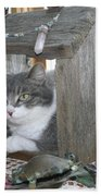 House Cat Beach Towel