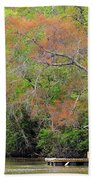 Houseboat On The Apalachicola River Beach Towel