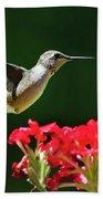Hovering Hummingbird Beach Towel by Christina Rollo