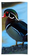 How Much Wood Could A Wood Duck Chuck Beach Towel