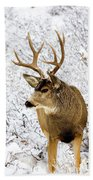 Huge Buck Deer In The Snowy Woods Beach Towel