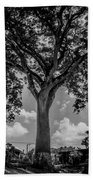 Huge Tree 12 Beach Towel