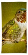 Hummingbird 1 Beach Towel