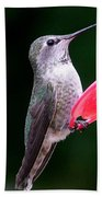 Hummingbird 23 Beach Towel
