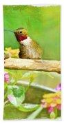 Hummingbird Attitude - Digital Paint 2 Beach Towel