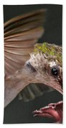 Hummingbird. Beach Towel