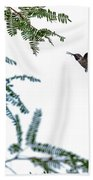 Hummingbird In Flight Isolated On White Sky Beach Sheet
