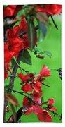 Hummingbird In The Flowering Quince - Digital Painting Beach Towel