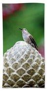 Hummingbird On Garden Water Fountain Beach Sheet