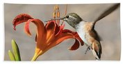 Hummingbird Whisper  Beach Towel