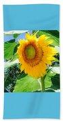 Humongous Sunflower Beach Towel