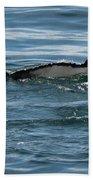 Humpback Tail Fins Beach Towel