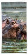Hungry Hungry Hippo Beach Towel