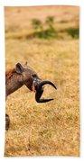 Hungry Hyena Beach Towel