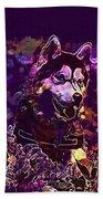Husky Dog Pet Canine Purebred  Beach Towel
