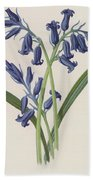 Hyacinth Beach Towel