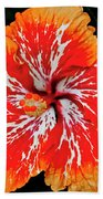 Hybrid Hibiscus II Maui Hawaii Beach Towel