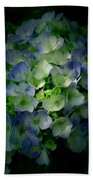 Hydrangea - Flowers Beach Towel
