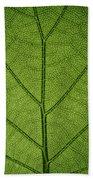 Hydrangea Leaf Beach Towel