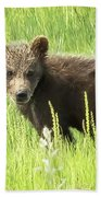 I Love Me A Teddy Bear Beach Towel by Belinda Greb